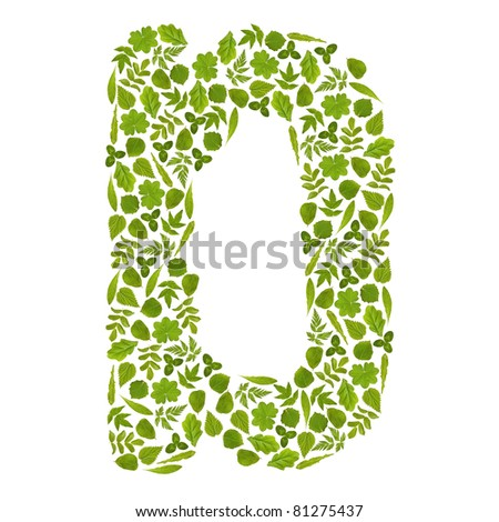 Letter D from green leafs - stock photo