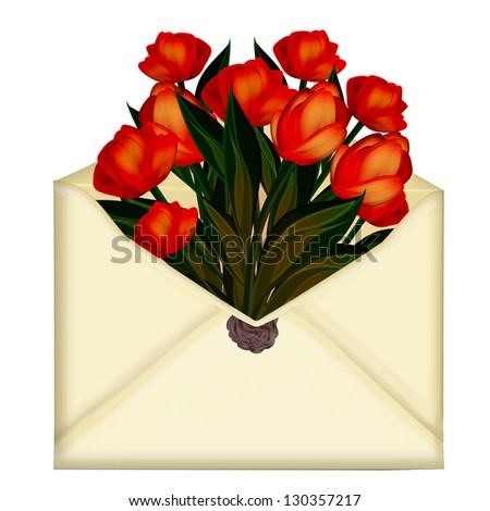Letter. Envelope. tulips - stock photo