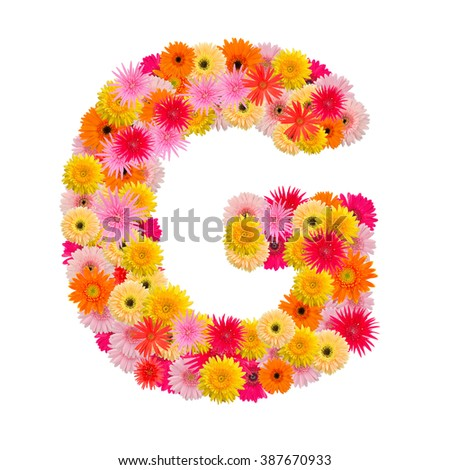 Letter G alphabet with gerbera  isolated on white background   - stock photo