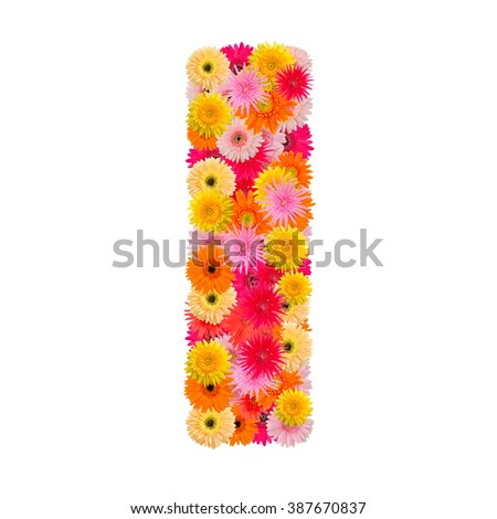 Letter I alphabet with gerbera  isolated on white background   - stock photo