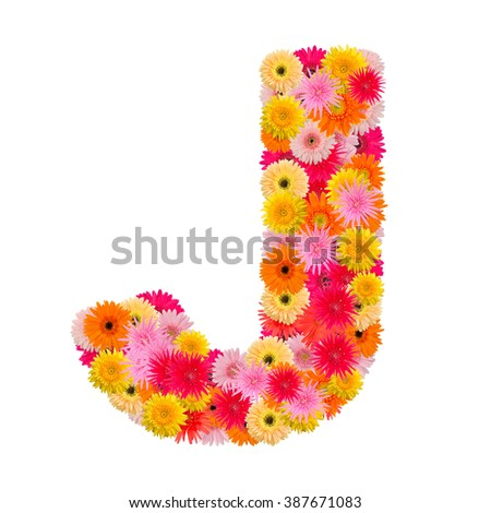 Letter J alphabet with gerbera  isolated on white background   - stock photo
