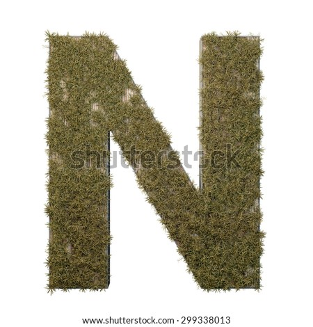 Letter N made of dead grass, growing on wood with metal frame - stock photo