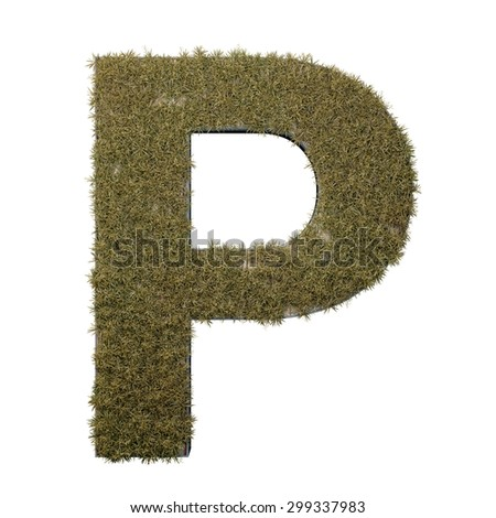 Letter P made of dead grass, growing on wood with metal frame - stock photo