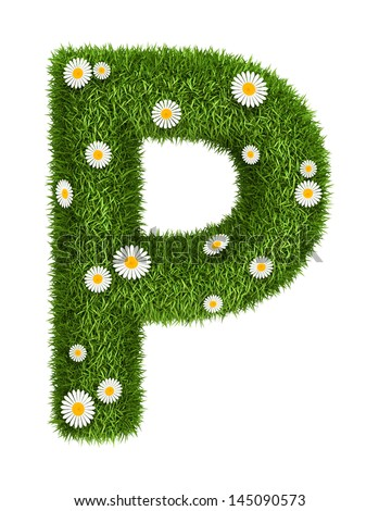 Letter P photo realistic grass font with flower camomile - stock photo
