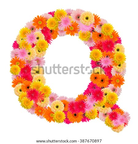 Letter Q alphabet with gerbera  isolated on white background   - stock photo