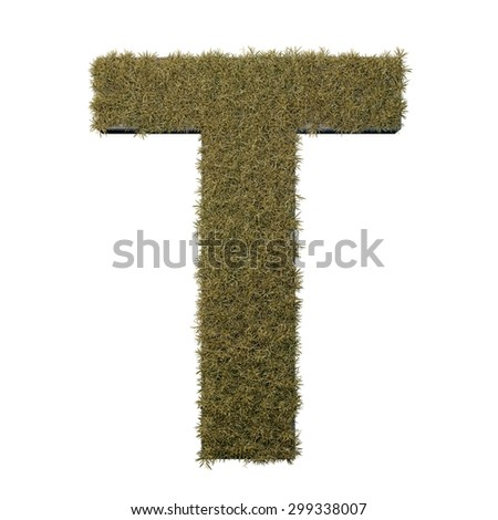 Letter T made of dead grass, growing on wood with metal frame - stock photo