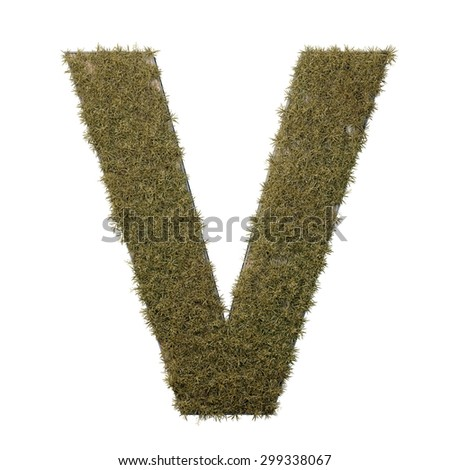 Letter V made of dead grass, growing on wood with metal frame - stock photo