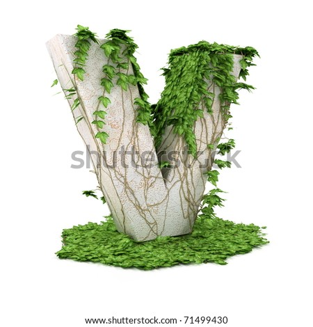 Letter V threads covered with ivy isolated on white background. - stock photo