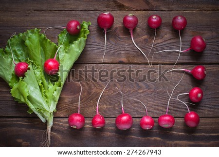 Lettuce and radishes - ingredients for a salad, a healthy food - stock photo