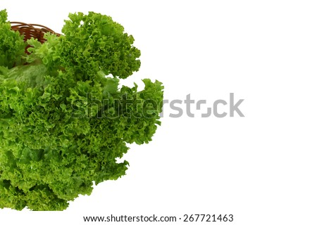 lettuce in a basket isolated - stock photo
