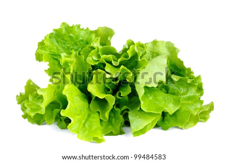 Lettuce leaves isolated on white background - stock photo