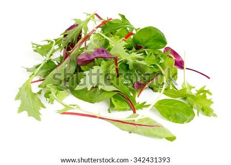 lettuce mix  - stock photo