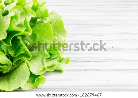 lettuce salad on a white  wood background - stock photo
