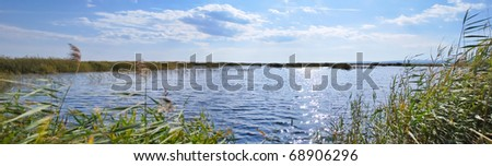 Level of the lake surrounded by reed - stock photo