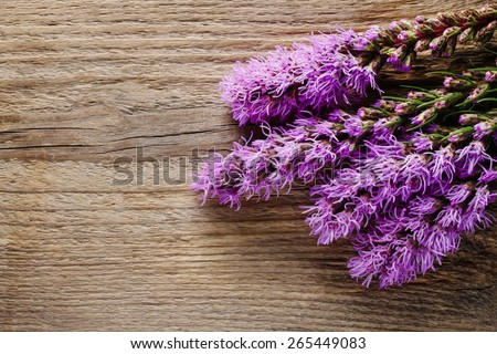 Liatris (blazing star or gayfeather) flowers on wooden background, copy space - stock photo