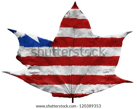 Liberia flag painted on dried autumn leaf - stock photo