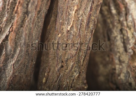 Licorice roots close up  on the table - stock photo
