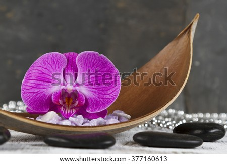 life balance concept with orchid and hot stones - stock photo