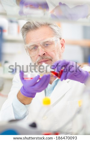 Life scientist researching in laboratory. Life sciences comprise fields of science that involve the scientific study of living organisms: microorganism plant animal and human cells, genes, DNA. - stock photo
