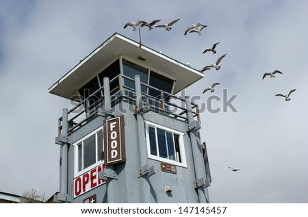 Lifeguard tower with incoming seagulls at the beach - stock photo
