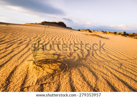 lifeless sand wild hot landscape at sunset - stock photo