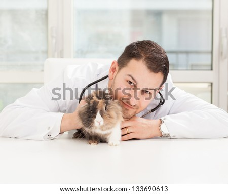 Lifestyle photo of a veterinary making a checkup on a dwarf rabbit - stock photo