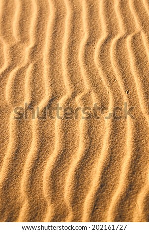 Light and shadow create sand snakes in desert - stock photo