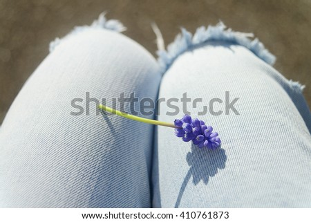 Light blue jeans and a violet flower - stock photo