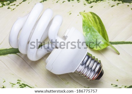 Light  bulb for the Green world - stock photo
