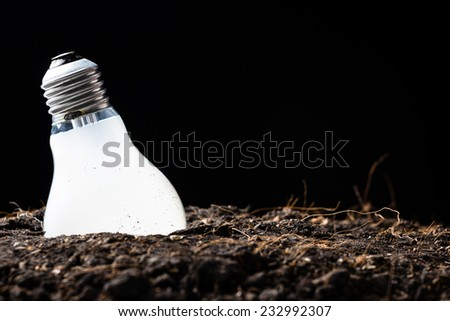Light bulb glowing in soil as idea symbol waiting for collect it - stock photo