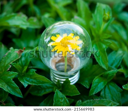 Light Bulb on green grass with Flower inside - stock photo