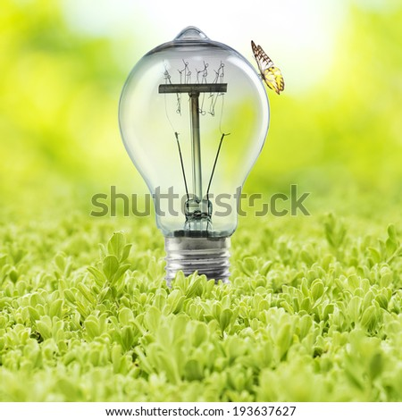 Light Bulb on green grass with plant inside and butterfly. Concept for Go Green and Ecology - stock photo