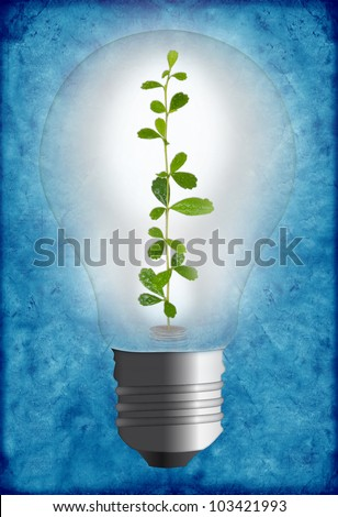 light bulb with tree and money on old paper - stock photo