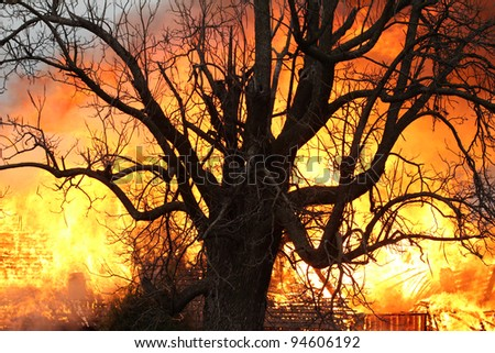 Light from a blazing house fire seen through the limbs of this decades old oak makes for a dramatic image, but more importantly stands as a warning to all to take the threat of fire seriously. - stock photo