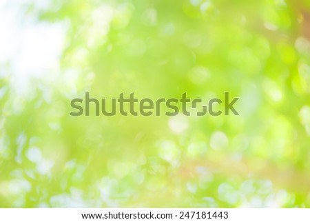 light  green and blue abstract defocused background - stock photo