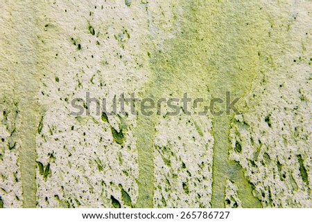 Light Green Watercolor Textures 3 - stock photo