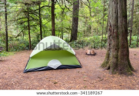 Light makes it through to this campsite in the woods - stock photo