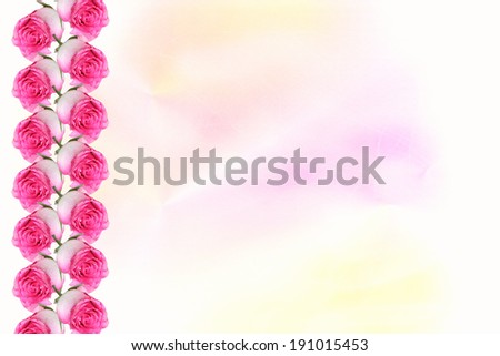 light pastel colored background with border of fresh rose buds. - stock photo