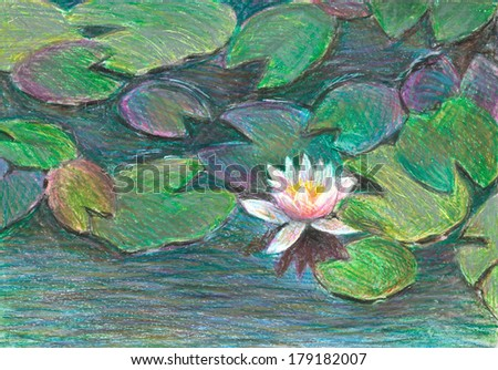 light pink water lily, oil pastel - stock photo