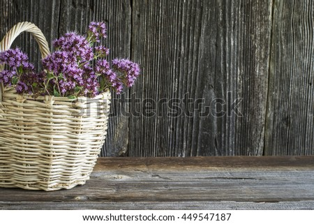 Light wicker basket with a bouquet of blossoming oregano on a dark wooden background. selective focus - stock photo