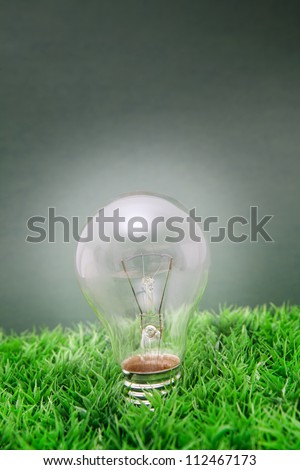 lightbulb on green grass with green background - stock photo