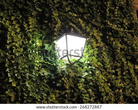 Lighted lantern at night street - stock photo