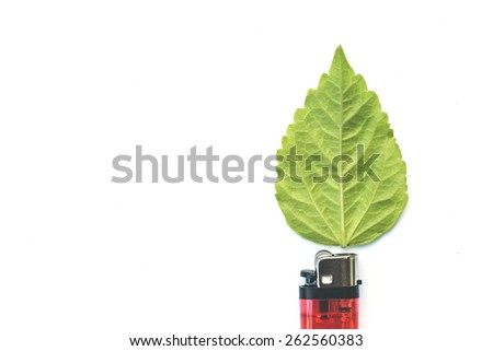 lighter with green leaf, burn concept isolated on white - stock photo