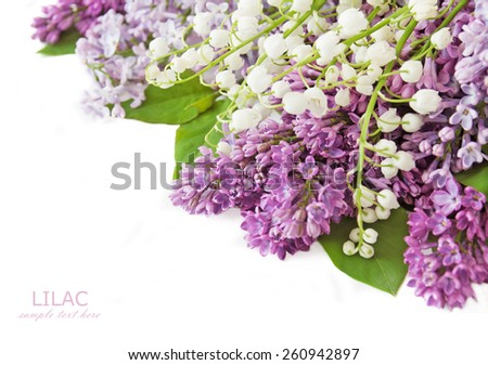 Lilac and lily of the valley flowers bunch isolated on white background - stock photo