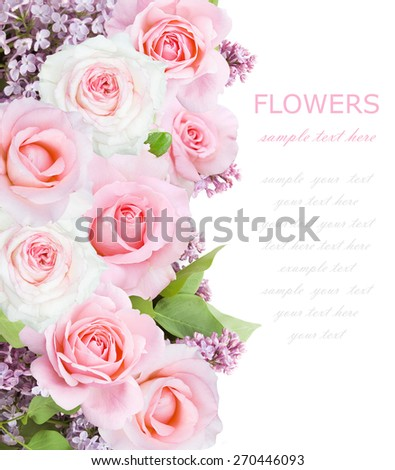 Lilac and rose flowers background isolated on white with sample text - stock photo