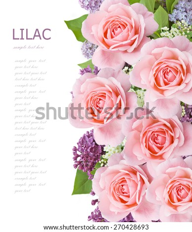 Lilac and roses flowers bunch isolated on white background with sample text - stock photo