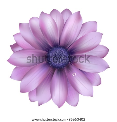 Lilac Flower With Water Drop - stock photo