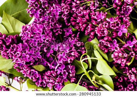 Lilac flowers background useful as greetings card, invitation cards, wedding invitation and postcards. - stock photo