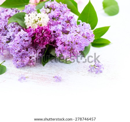 Lilac flowers bunch over white wooden background. Beautiful violet Lilac flower border design closeup. Copy space for your text - stock photo