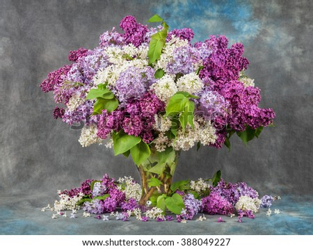 Lilac in a vase on the table. Dramatic light - stock photo